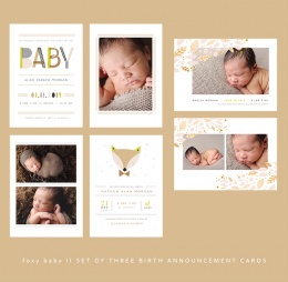 Foxy20Baby205x720Birth20Announcement20Cards.jpeg