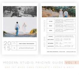 Modern20Studio20Pricing20Guide20vol2031.jpeg
