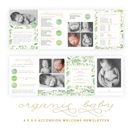 Organic20Baby204x5-520Accordion20Fold20Marketing20Brochure1.jpeg