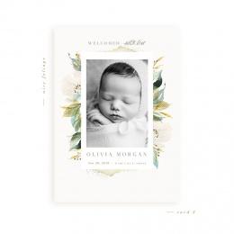 airyfoliage-card2