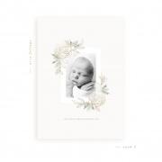 airyfoliage-card3b