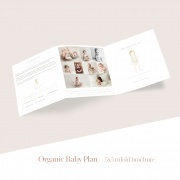 Organic_baby_plan_5x5_trifold_brochure1