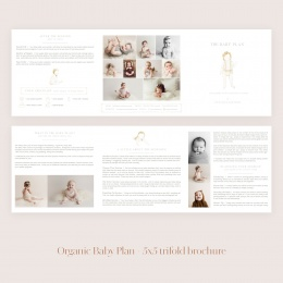 Organic_baby_plan_5x5_trifold_brochure2