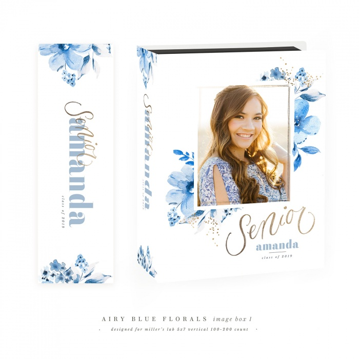 airy_blue_florals_grad_image_box1