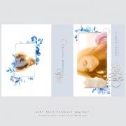 airy_blue_florals_grad_image_box3a