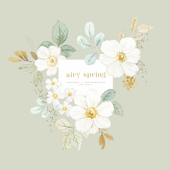 airy_spring_clipart
