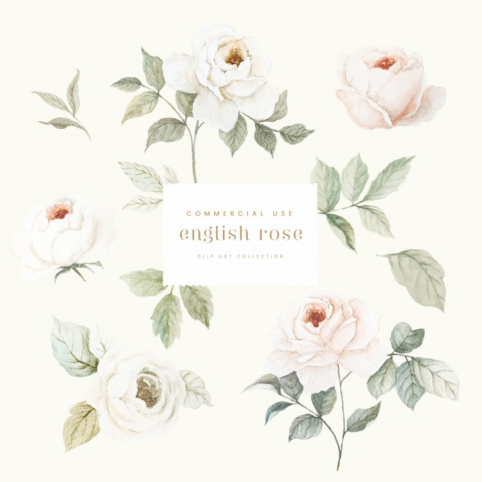 englis_rose_clipart