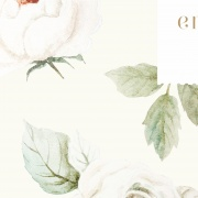 englis_rose_clipart1