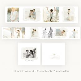 Deckled_simplicity_mini_accordion_album_template