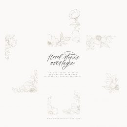 floral_stories_IG_overlays_vol1
