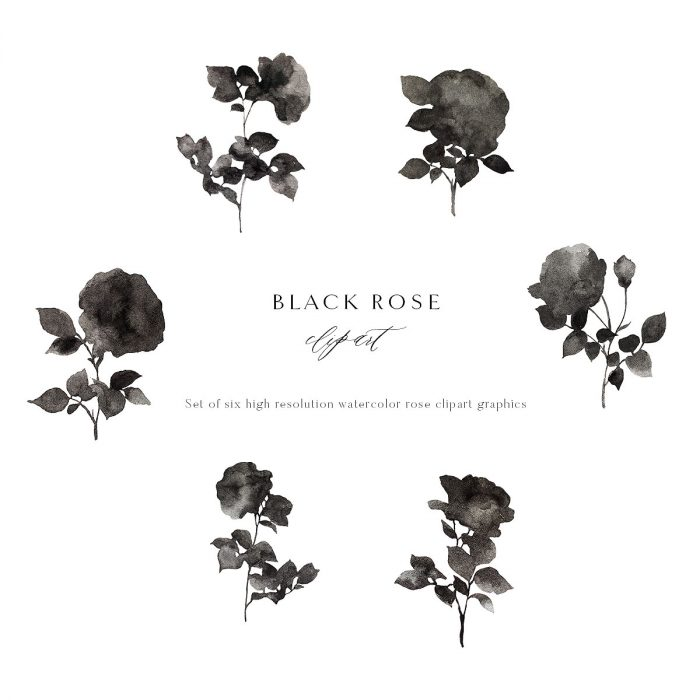 black_rose_clipart