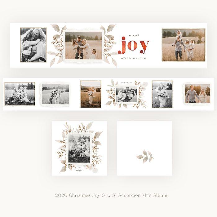 2020_christmas_joy_3x3_Accordion