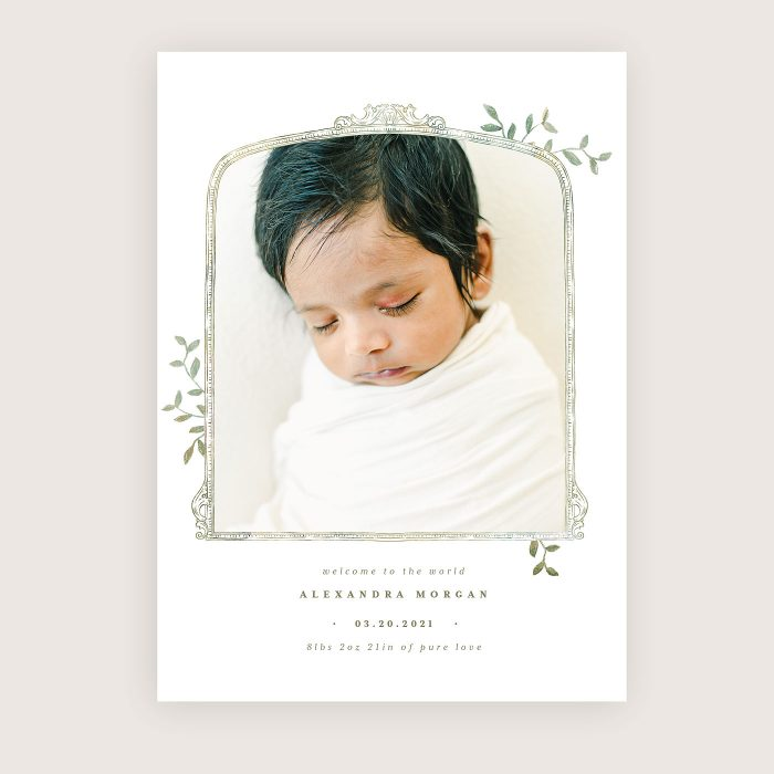 spring_whimsy_birth_announcement2