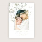 spring_whimsy_birth_announcement3