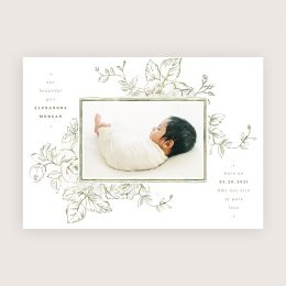 spring_whimsy_birth_announcement4