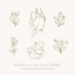 wildflower_watercolor_clipart